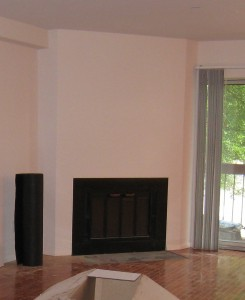 Fireplace Before Vacant Home Staging