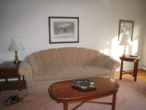 Living Room Couch Before Home Staging