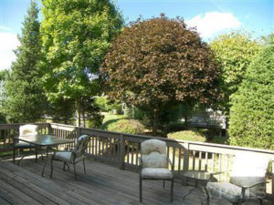 Deck After Budget Home Staging Consultation