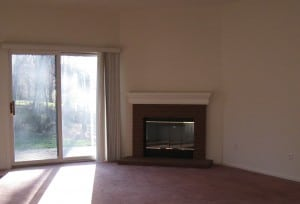 Fireplace - Home Decorating - Before