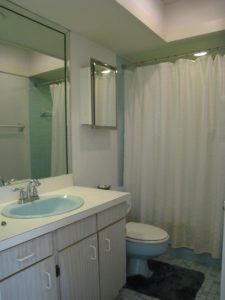 Master Bath Before Home Staging